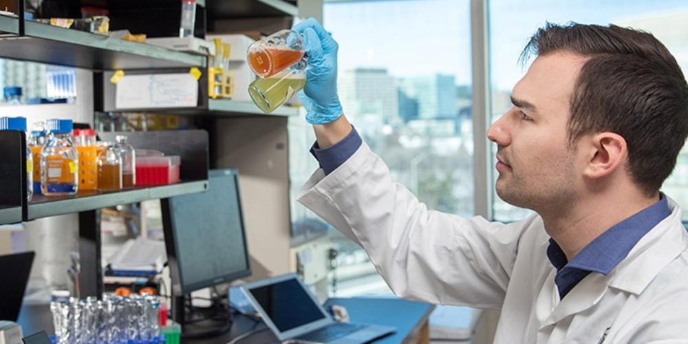 Dans un laboratoire de recherche, Daniel Grégoire tient à la hauteur de ses yeux deux fioles contenant des liquides colorés