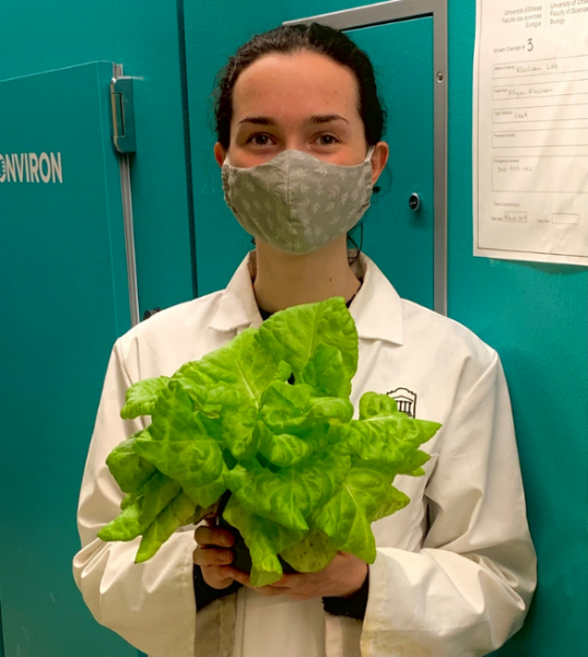 Monique Power wearing a face mask while holding a lettuce plant