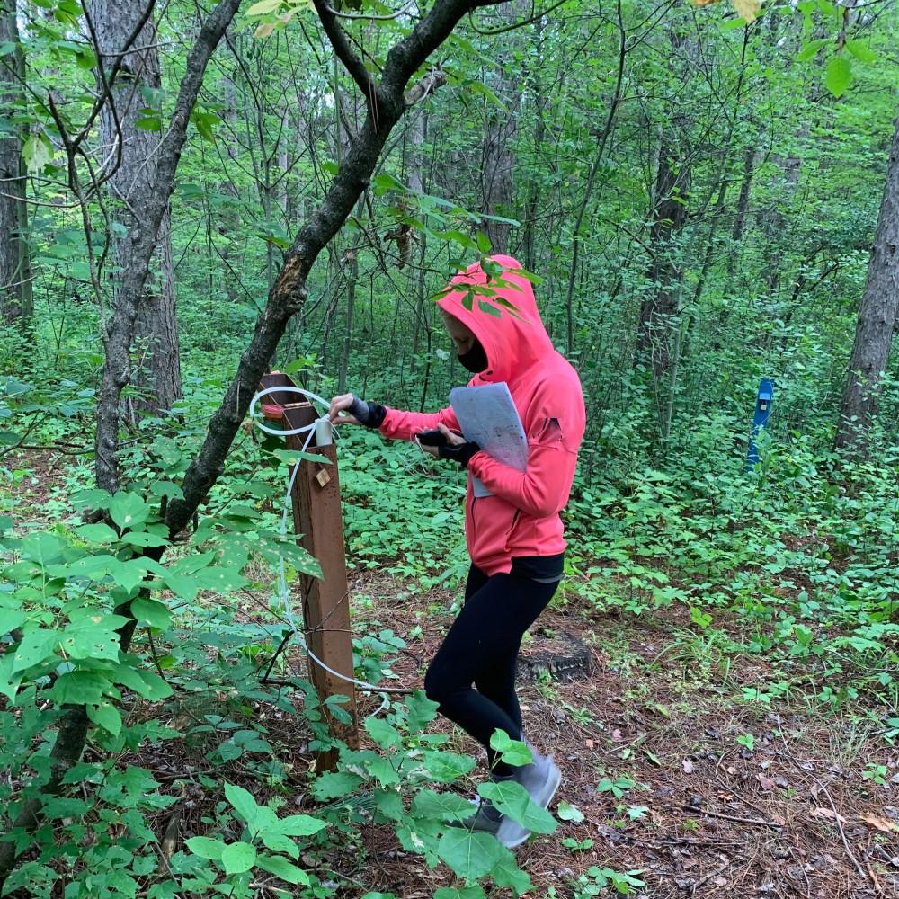 un élève mesure la température de l'eau souterraine dans le puits (piézomètre) dans une forêt. Elle tient un petit instrument dans sa main