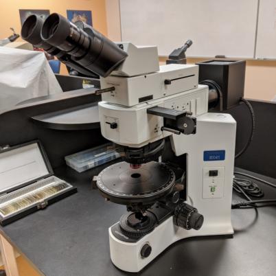 Microscope généralement utilisé dans le cours