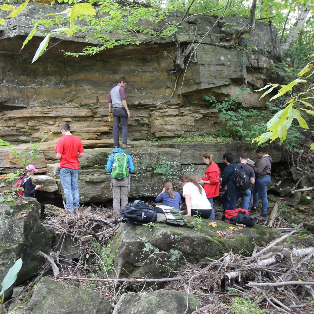 un groupe d'élèves examine une paroi rocheuse en surplomb avec de nombreuses couches dans la forêt.